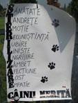 Organizatiile pentru protectia animalelor si iubitorii de animale au manifestat