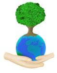 Noutatile Fundatiei Montessori din Romania