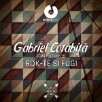 "Gabriel Cotabita, catre femeile, victimele violentei: ""RDK-te si fugi!"""