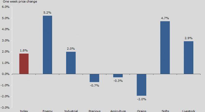 Evoluție săptămânală mărfuri: prețul petrolului crește, producția industrială americană scade, aurul își caută echilibrul
