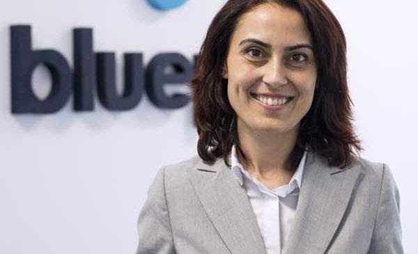 Blue Point anunţă o creştere cu 25% a cifrei de afaceri în 2016