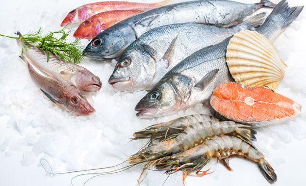 Alfredo Seafood: Somonul și macroul sunt campioni în topul peștelui în România