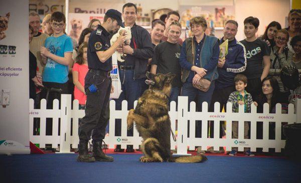 Cel mai mare eveniment dedicat animalelor de companie are loc în acest weekend