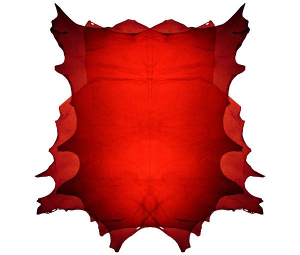 piele-moale-transparenta