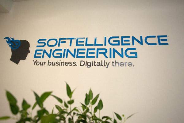 softelligence-engineering