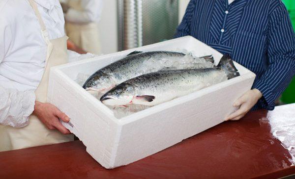 Romfood Trading estimează vânzări de circa 2,6 milioane de euro în 2017 pentru marca Alfredo Seafood, pe segmentul HoReCa