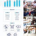 Infografic Tabara Meseriasilor 2015-2017