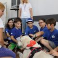 Terapia cu animale Doctor cu 4 labute