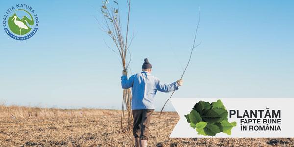 Vizual Coalita Natura 2000 si Plantam fapte bune - parteneri ai impaduririlor