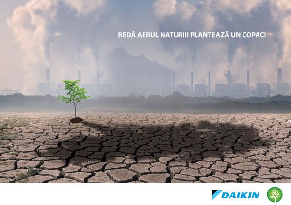Plantam aer, o campanie Daikin in colaborare cu Plantam fapte bune in Romania