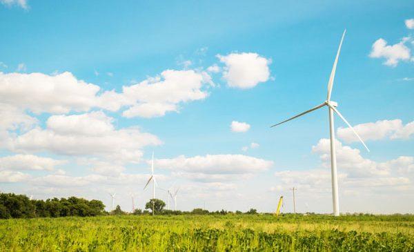Anheuser-Busch și Enel Green Power anunță un parteneriat în domeniul energiei regenerabile