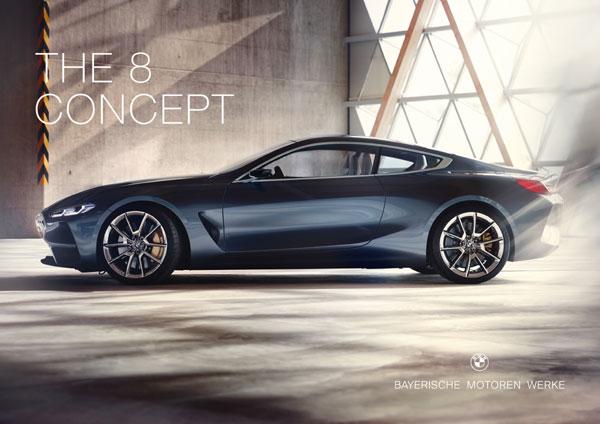 lux inovator in stilul BMW