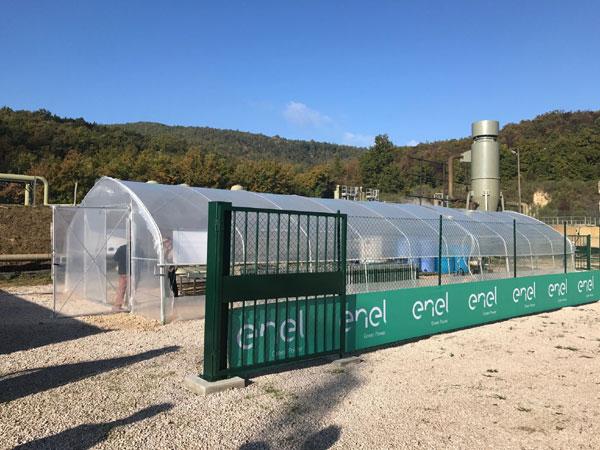 Enel Green Power inaugureaza prima sera de spirulina din lume alimentata cu energie geotermala