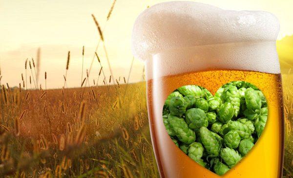 Nou studiu științific despre efectele consumului moderat de bere pentru sănătate