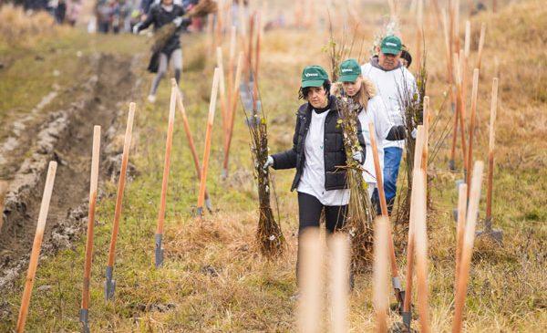 La Jegălia, s-au plantat fapte bune pentru al treilea an consecutiv