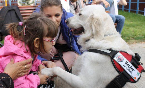 """Sute de copii și bătrâni s-au bucurat de vizitele câinilor de terapie de la """"Doctor cu 4 lăbuțe"""""""