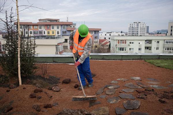 Fondul IKEA pentru Mediul Urban, Acoperisul Verde