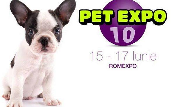PetExpo, cel mai mare eveniment dedicat animalelor de companie, împlinește 10 ani
