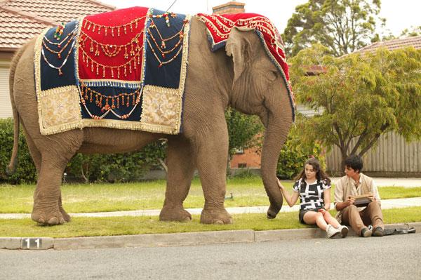 Printesa elefantilor e2