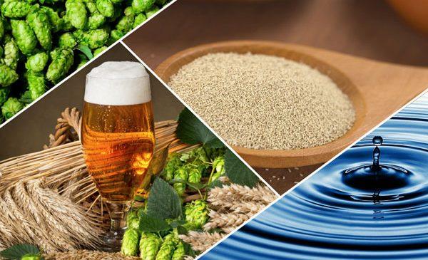 Legumele cu frunze verzi, cerealele integrale și berea – posibili aliați ai sistemului osos