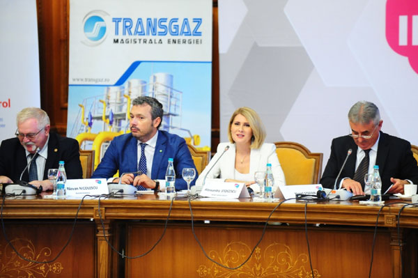 Forum Romania, Hub Energetic