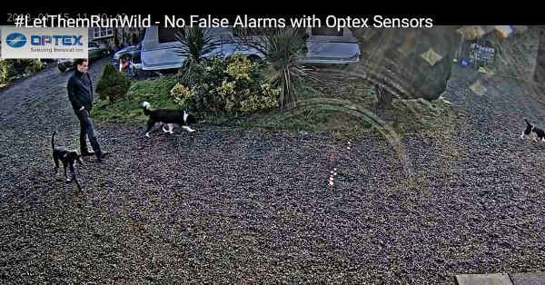 Senzorii OPTEX, fără alarme false cauzate de animale