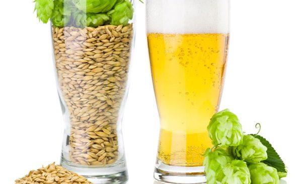 Trei surse de antioxidanți la îndemână pe timpul verii: fructe de pădure, vinete, bere