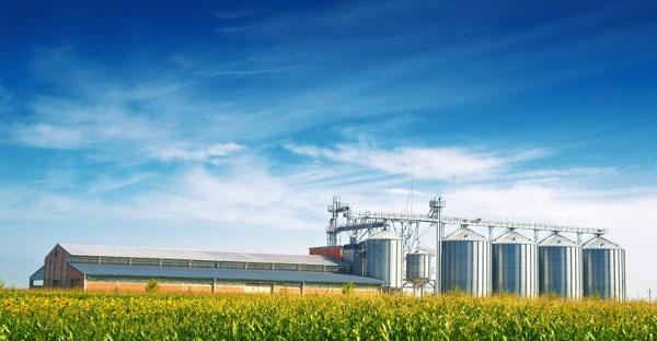Bento Grânar – soluția ideală pentru succesul campaniei agricole de toamnă