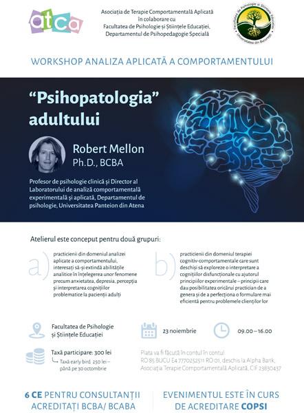 workshop Psihopatologia Adultului