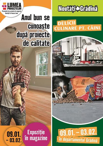 Amenajarea corecta a incaperilor si Hrana pentru camarazii canini, HORNBACH