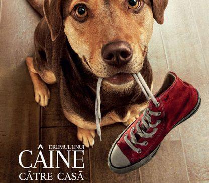 """""""Drumul unui câine spre casă"""" ajunge la cinema"""