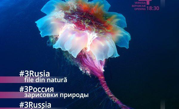 #3Rusia – file din natură