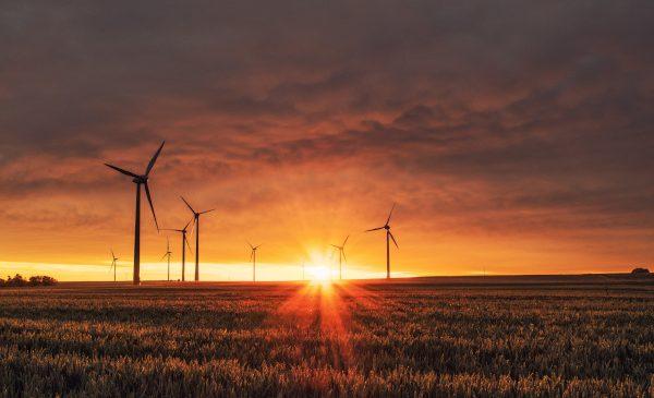 Atos compensează 100% din emisiile sale de carbon printr-un program global de parcuri eoliene