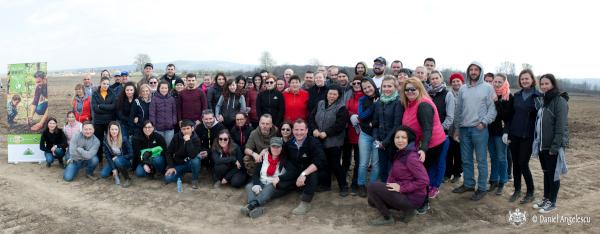 Peste 10.000 de salcâmi, stejari și ulmi plantați de echipele LEROY MERLIN în trei zone rurale din țară