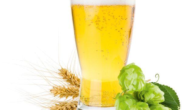 Patru surse de antioxidanți care te pregătesc pentru vară: căpșune, cireșe, morcovi și bere consumată moderat