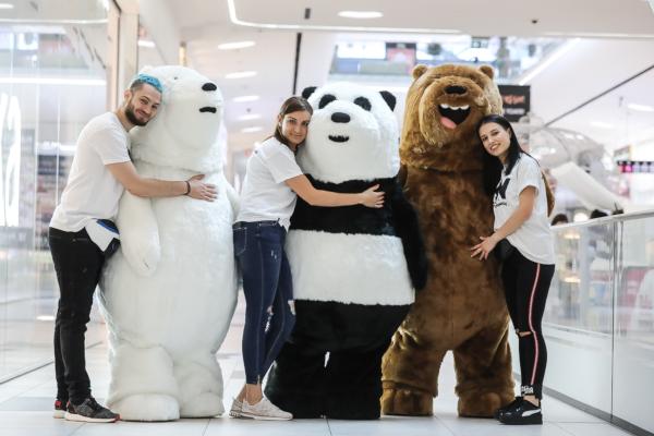 fratii ursi la Mega Mall