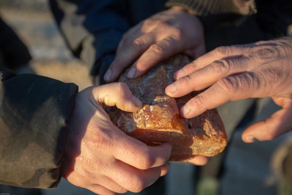 In cautarea chihlimbarului, aurul baltic