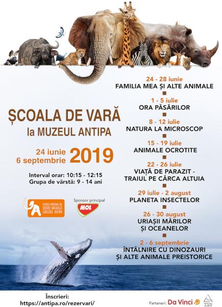 Scoala de Vara Antipa 2019