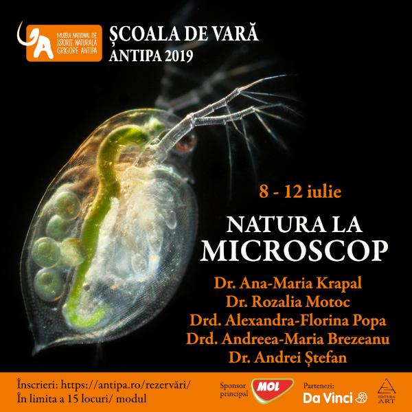 Natura la microscop