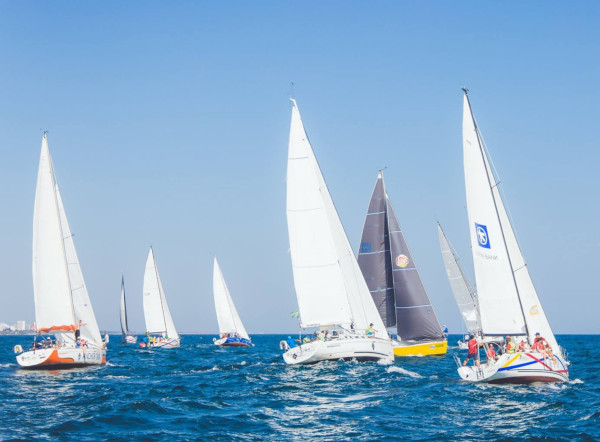 Regatta IT 2