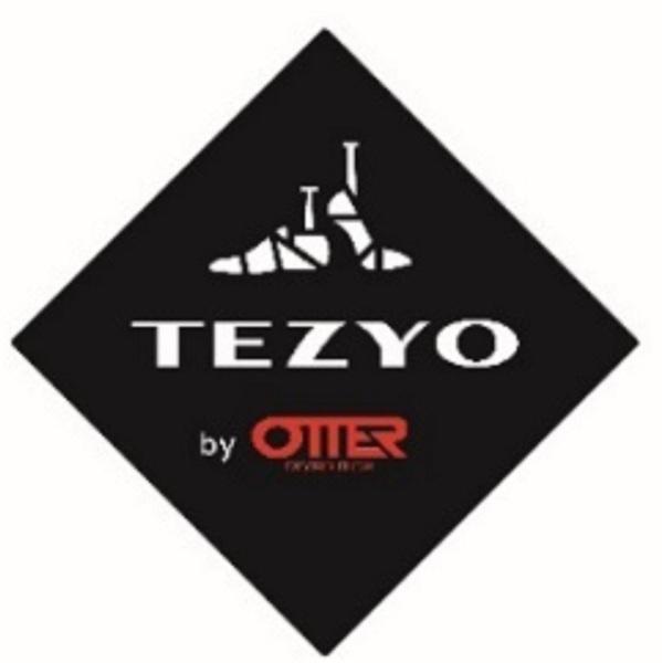 Tezyo logo