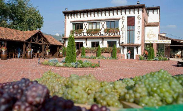 """Compania """"Cramele Recaș"""" a primit certificarea care atestă că toate vinurile produse sunt vegane"""