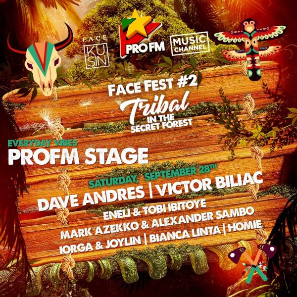 vizual PROFM stage
