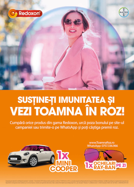 Bayer, Toamna in Roz