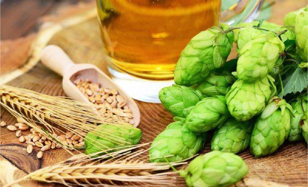 """Simpozionul """"Beer and Health"""", Bruxelles: berea consumată moderat se poate încadra într-un stil de viață echilibrat"""