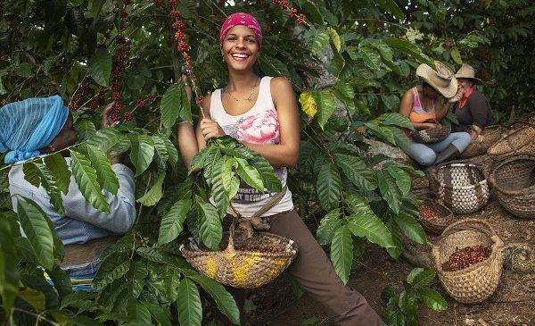O cafea mai bună pentru un viitor mai bun: Lavazza își ia angajamentul să sprijine comunitățile din Cuba