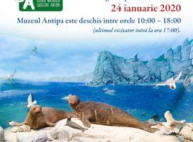 Programul special de vizitare al Muzeului Antipa vineri, 24 ianuarie 2020
