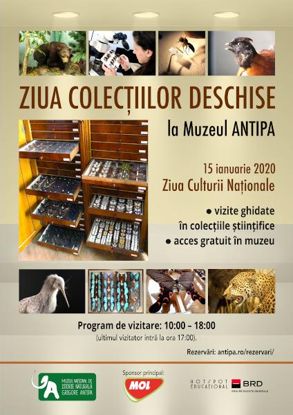 Ziua Colectiilor Deschise la Antipa