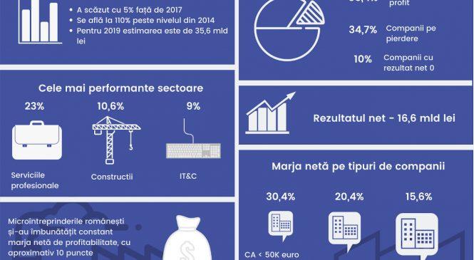Studiu Instant Factoring: Companiile cu cifra de afaceri sub 50.000 euro au fost cele mai profitabile microîntreprinderi în 2018