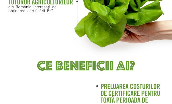 Carrefour lansează a doua ediție a programului CREȘTEM ROMÂNIA BIO, cea mai amplă inițiativă care susține dezvoltarea agriculturii ecologice locale